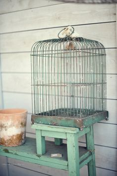 color, bird cage, vintag birdcag