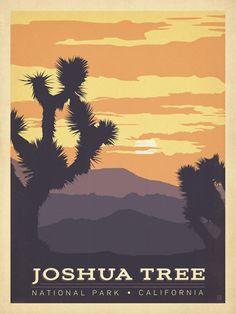 Joshua Tree National Park - Anderson Design Group has created an award-winning series of classic travel posters that celebrates the history and charm of America's greatest cities and national parks. Founder Joel Anderson directs a team of talented Nashville-based artists to keep the collection growing. This print displays the glorious colors of a desert sunset in Joshua Tree National Park, California.