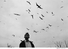 Serie Pájaros. Fotografía documental por Graciela Iturbide