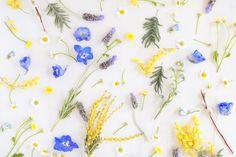 Spring Wallpaper Iphone Floral Prints Desktop Wallpapers 64 Ideas For 2019 Inspirational Desktop Wallpaper, Floral Wallpaper Desktop, Office Wallpaper, Spring Wallpaper, Calendar Wallpaper, Macbook Wallpaper, Computer Wallpaper, Flower Wallpaper, Nature Wallpaper