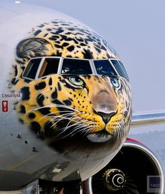 Rossiya Airlines Boeing 777300 with a face of the endangered Amur leopard painted on its nose cone arrives at Vladivostok International Airport Yuri. Airplane Painting, Airplane Art, Aviation Humor, Aviation Art, Private Jet Interior, Airplane Fighter, Volkswagen Karmann Ghia, Aircraft Painting, 3d Street Art