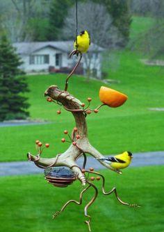 What an interesting fruit feeder for the birds. What an interesting fruit feeder for the birds. What an interesting fruit feeder for the birds. Bird House Feeder, Diy Bird Feeder, Oriole Bird Feeders, Garden Crafts, Garden Projects, Garden Ideas, Bird Feeding Station, Bird Houses Diy, Backyard Birds