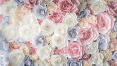 цветок, роза, flowers, rose, 5k (horizontal)