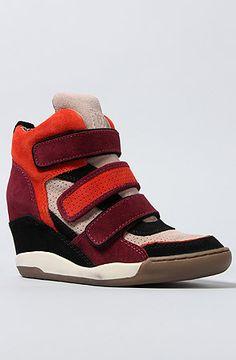 d5a20b4097d Ash Shoes The Alex Sneaker in Black Lotter Bourdeaux Coral Suede