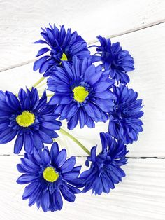 This Dark Blue Paris Daisy Bush is long. Spring Wreaths, Summer Wreath, Front Door Decor, Wreaths For Front Door, Spring Decorations, Home Decor Inspiration, Farmhouse Decor, Florals, Diy Home Decor