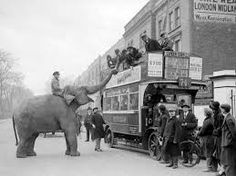 Image result for old circus