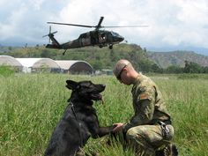 MWD Ajax #1892 (retired) E.O.W. 19 May 2017.  Royal Australian Air Force Military Working Dog.  From his handler CPL Douglas: On Friday 19 May 2017, at nearly the stroke of midnight, I said goodbye to the best friend I've ever had. Ajax, you made me a better person and my life was better having you in it.  Thank you both for your service. MWD Ajax you are a HERO. Run free Warrior Boy - You have earned your wings.