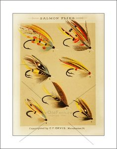 early fishing tackle: vintage fly making companies | fly fishing, Fly Fishing Bait