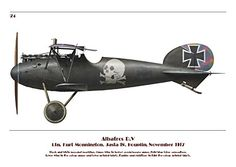 Albatros Fighter Aircraft of WWI (Spotlight on): Dave Douglass: 9788363678579: Amazon.com: Books