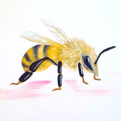 Bee Acrylic on Canvas