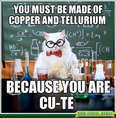chemistry cat - Google Search