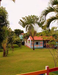 Journey to Dominican Republic - fine picture