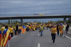 #tram213 #tram214 #Viacatalana #11s2013 Foto de VSXI