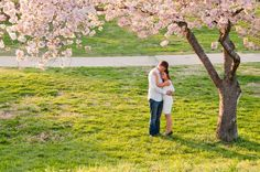Nathan, Di & some gorgeous cherry blossoms