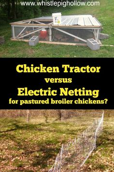 9 Best Electric Netting for Poultry images in 2017 | Poultry