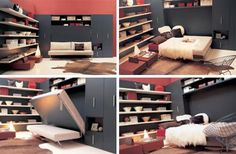 Another version of the most awesome murphy bed!