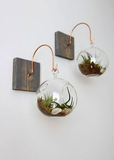 Because nothing spruces up a boring old wall like a little bit of nature.