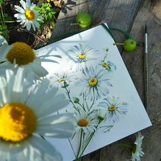 "6,959 Likes, 17 Comments - Watercolor illustrations  (@watercolor.illustrations) on Instagram: "" Watercolorist: @knyazeva_art  #waterblog #акварель #aquarelle #drawing #art #artist #artwork…"""