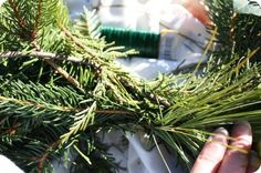 The ORIGINAL tutorial on how to make evergreen garland and evergreen swags.  So EASY and cheap!