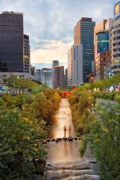 Seoul, Südkorea – Annette Mayo – Join the world of pin Seoul, South Korean Won, Places Around The World, Around The Worlds, The Rok, Korean Peninsula, South Korea Travel, Daegu, Beautiful Places