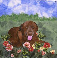 Sugar Bee dog quilt.