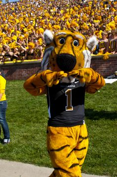 Missouri mascot Truman the Tiger roams the sidelines in front of a sea of gold at a Mizzou game.