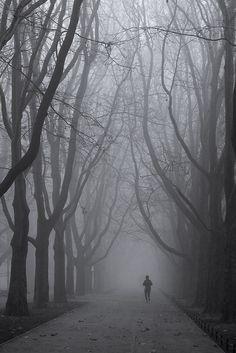 Runner in the fog