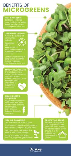 Disease-Fighting Veggies You Can Grow at Home Grow your own greens - Benefits of microgreens - Dr. AxeGrow your own greens - Benefits of microgreens - Dr. Calendula Benefits, Lemon Benefits, Coconut Health Benefits, Tomato Nutrition, Avocado Nutrition, Stomach Ulcers, Types Of Tea, Stop Eating, Natural Cures