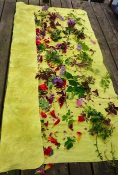 dye plants | Threadborne Really great blog about natural dyes and eco-prints.