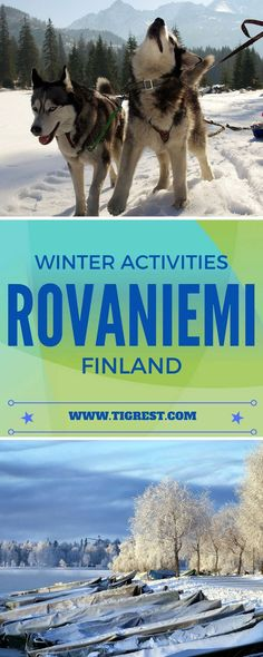 Best winter activities in Rovaniemi, Finland - dog sledding, reindeer sledding, snowmobile safaris, Santa's village and much more!