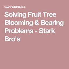 Solving Fruit Tree Blooming & Bearing Problems - Stark Bro's