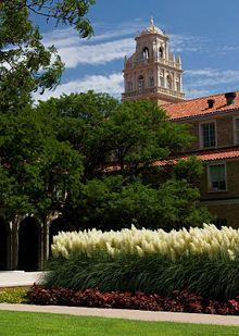 28 Best Campus Beauty images | Texas tech university, Lubbock texas ...