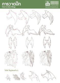 Dessiner des ailes