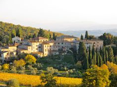 spend at least a week in this medieval winery village, Fonturetoli, in Tuscany.
