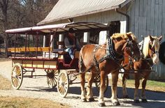 Carriage Rides at Biltmore Carriage Rides  Travel through the estate for 45 minutes on a 12-passenger wagonette and enjoy unforgettable views. Offered daily. Call us at 800-411-3812 for details and reservations.  Cost: $30 per person. One child 5 years and younger free per paying adult.