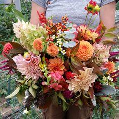 Fall bouquet  with dahlias,  hydrangea,  eucalyptus, bittersweet,  viburnum,  dusty miller,  celosia.