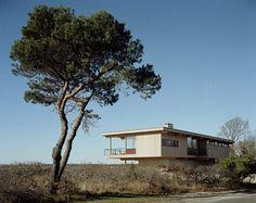 Shelter island/Dwell