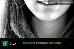 #health #teeth #facts