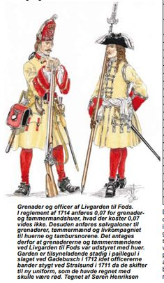 Louis Xiv, Military History, Warfare, Troops, 18th Century, Sweden, Scandinavian, Spanish, Army
