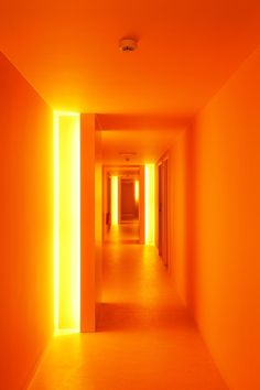 Discover recipes, home ideas, style inspiration and other ideas to try. Orange Aesthetic, Rainbow Aesthetic, Aesthetic Colors, Aesthetic Pictures, Bedroom Wall Collage, Photo Wall Collage, Picture Wall, Orange Rooms, Orange Walls