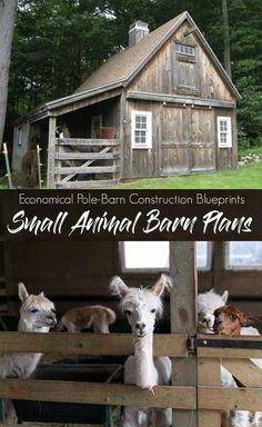 10 Pet Tips Animal Shelter Organization Ideas Small Barn Plans, Small Barns, Farm Plans, Pole Barn Plans, Goat Barn, Farm Barn, Alpacas, Pole Barn Construction, Mini Barn