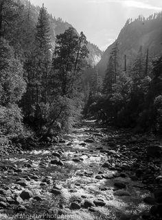 Yosemite images in black and white | Travel Photo Discovery #Yosemite #Nature