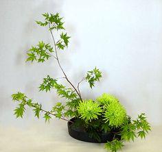Ikebana de colores verdes
