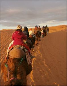 Do you wish to Tours in morocco, would like to enjoy the best of Morocco With Morocco Sahara holiday Tour  you will have greater chance to explore the beauties of the country. Experience the difference! Visit our website at www.morocco-sahara-holiday.com