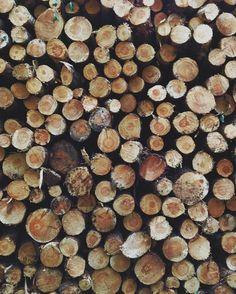 Raw cut wood.