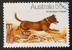 """Issued of February Australian Kelpie """"Canis lupus familiaris"""" - Dogs Fishing Australia, Christmas In Australia, Australian Painting, Postage Stamp Art, Horses And Dogs, Vintage Stamps, Fauna, Working Dogs, Stamp Collecting"""