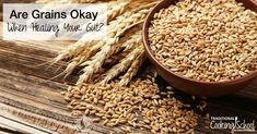 Are grains okay when healing your gut? If you have gut dysbiosis (leaky gut, candida), this question deserves an answer -- and it's not a simple one. Gaps Diet Recipes, Whole Food Recipes, Keto Recipes, Healthy Recipes, Bread Recipes, Gut Health, Health And Nutrition, Sourdough Recipes, Whole Foods
