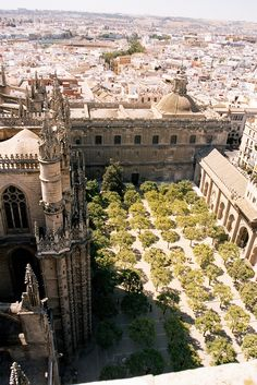 Seville, Spain Probably my favourite Spanish city. Remember long, very hot languid days there.