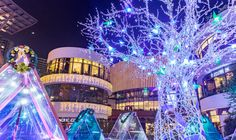 Nature-inspired festive lighting for shopping centers and cities to deliver extraordinary experiences to visitors or all ages. Zoo Lights, Plastic Animals, Light Installation, Nature Inspired, Christmas Trees, Dna, Sustainability, Custom Design, Fair Grounds