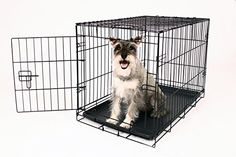 Carlson Secure and Compact Single Door Metal Dog Crate, Medium Carlson Pet Products http://www.amazon.com/dp/B00MYDYD86/ref=cm_sw_r_pi_dp_sh2Yub16BJ11N